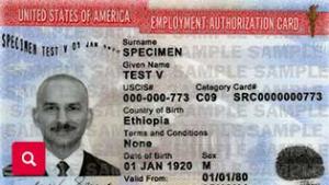 EAD - Employment Authorization Document