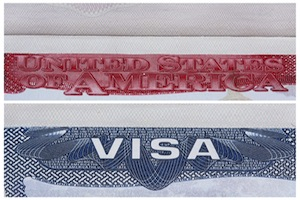 Why blanket L visas work for international companies